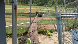 A light pole sits in the middle of the South Side Youth Baseball minor league diamond after a tornado struck the facility. (Sports Journal Photo)